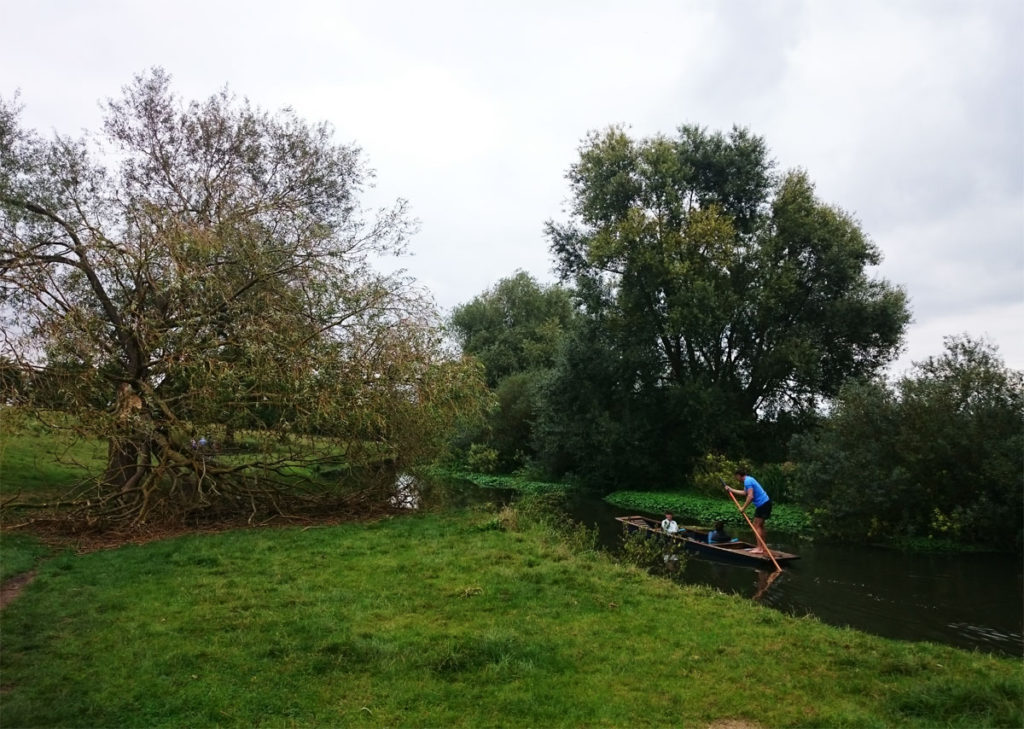 punting-to-grantchester